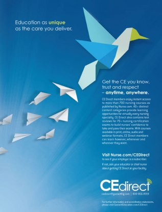 CE Direct Branding Concept and Design (Origami Bird)