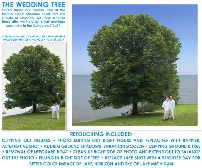 Wedding Tree Art • May 2016