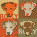 Warhol Album Roxy 2020