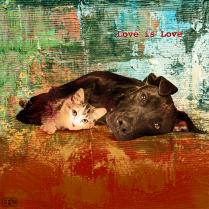 """Love Is Love"" JUNE 2018 #PawPrintsLA Art"