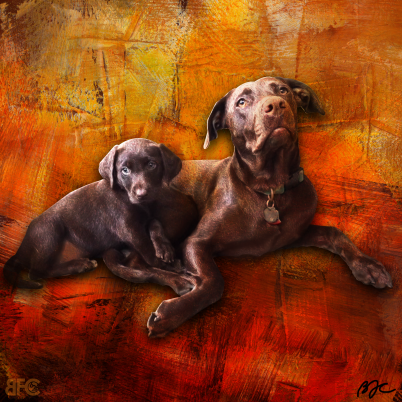 Commissioned PawPrints Art for Joe Palla_Darcy & Ellie 2020