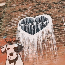 """Unconditional Love Grafitti"" PawPrintLA_GrafittiArt_Sept_2018"