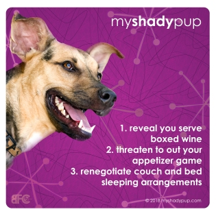 MyShadyPup.com Coaster No. 4 • Nov 2018