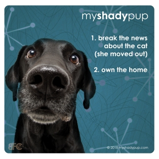 MyShadyPup.com Coaster No. 5 • Nov 2018