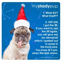 MyShadyPup.com No. 8 • DEC 2018